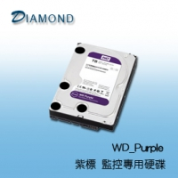 WD 紫標 監控專用硬碟