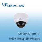 DH-SD42212TN-HN 1080P 星光級12倍1080P IP快速球